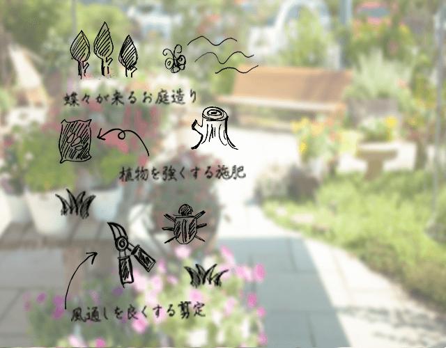 蝶々が来るお庭づくり、植物を強くする施肥、風通しをよくする剪定