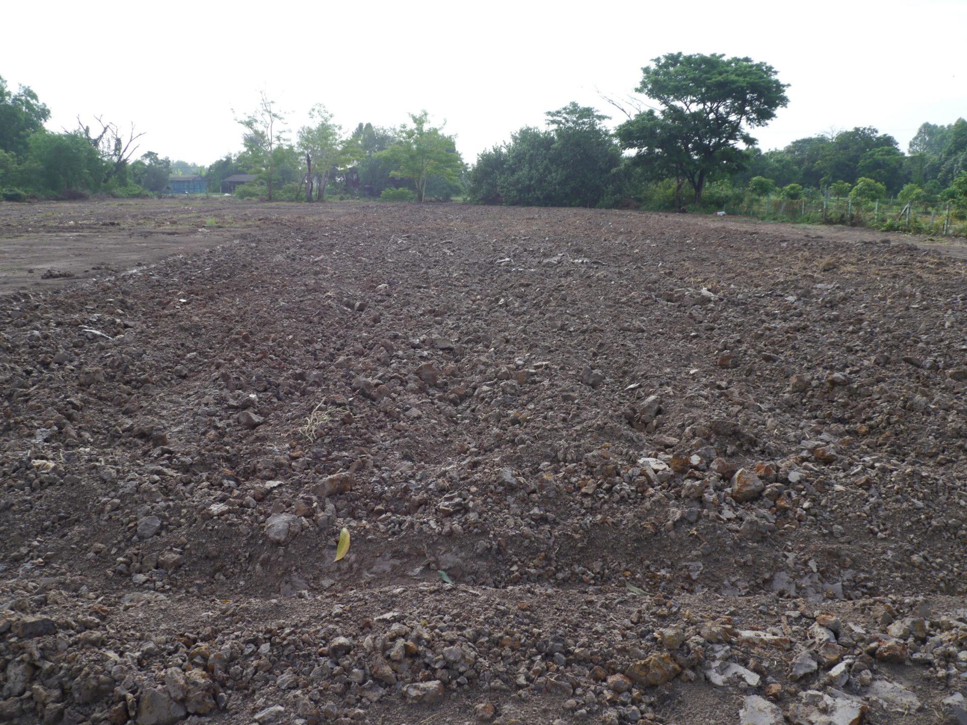 土壌の改良を行いました