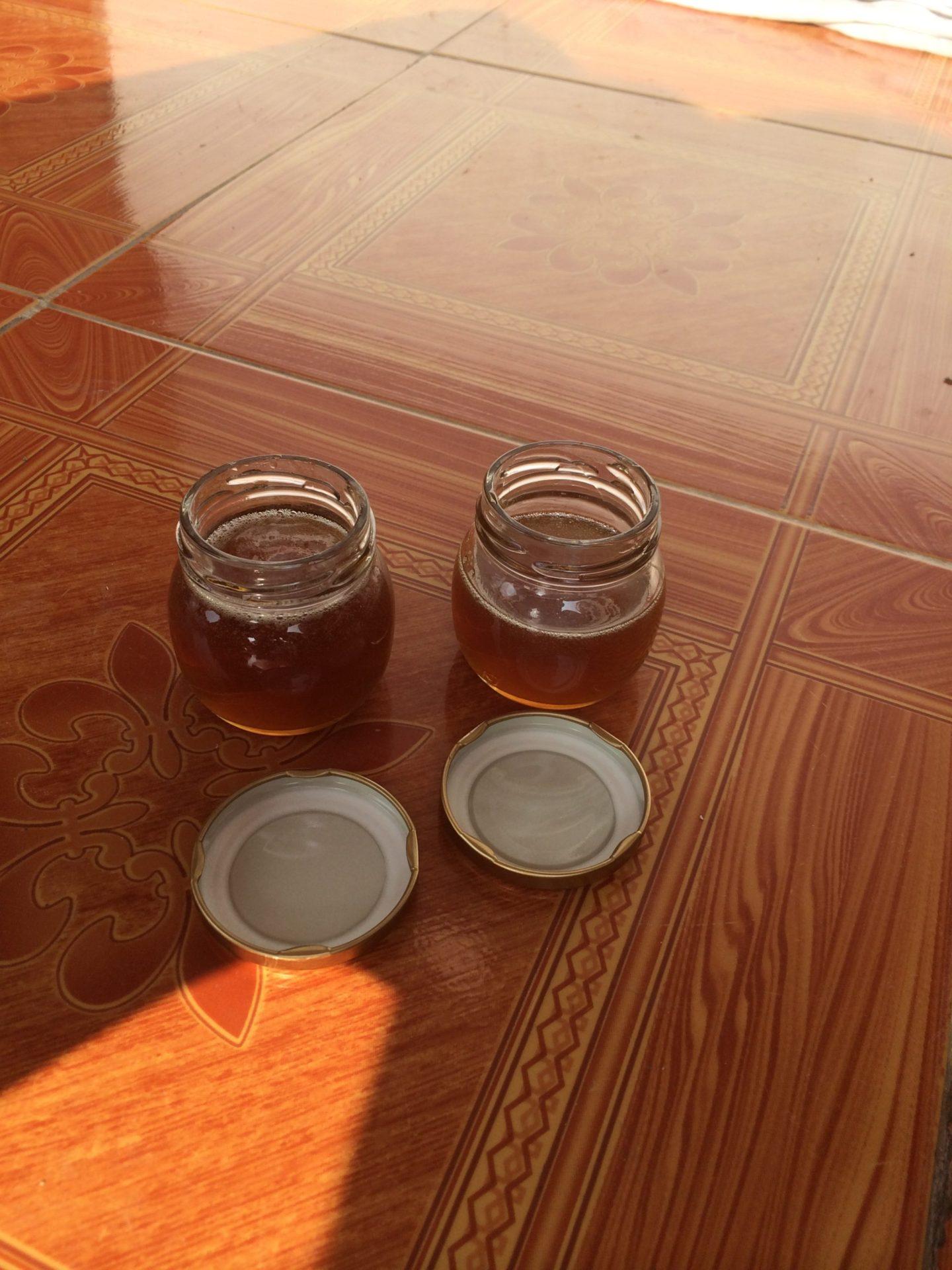 養蜂の様々な技術を伝えました