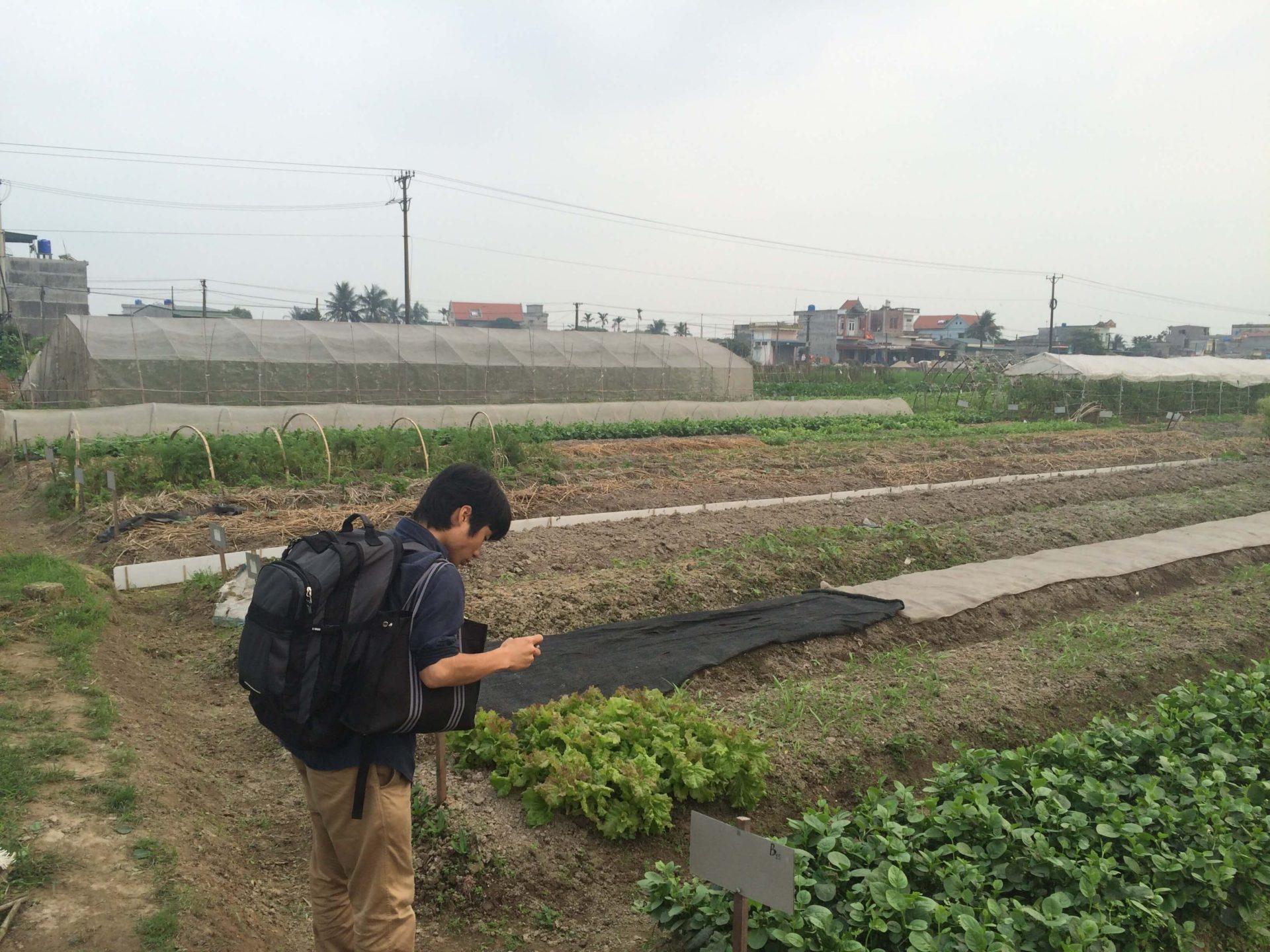 虫・肥料・病気…畑の対策に向かいました!