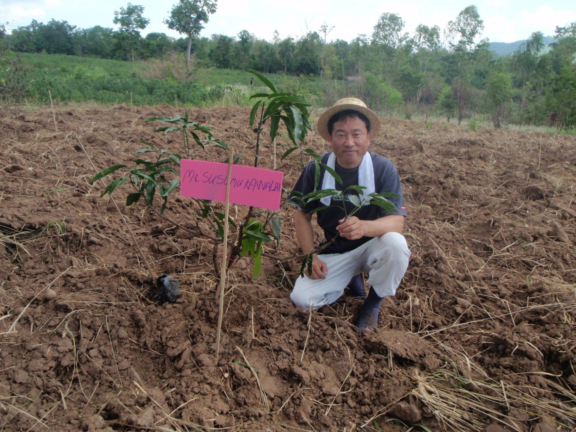 果樹のなる木を植えました